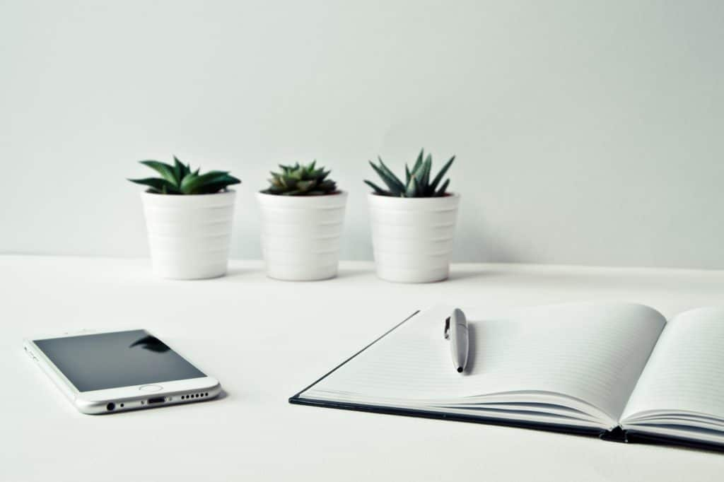 3 succulenty plant in white pots sit on a desk